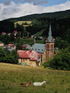 Kostel Nanebevzetí panny Marie, Horní Maršov_1