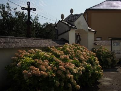 Kostel sv. Martina Měrotín_15
