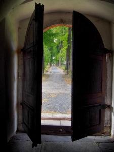 Moravský Beroun - Farní kostel Nanebevzetí Panny Marie_4
